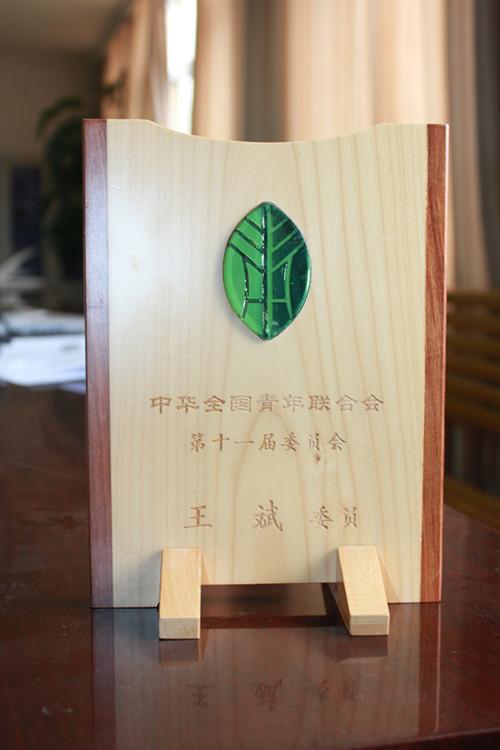 中华全国青年联合会第十一届委员会