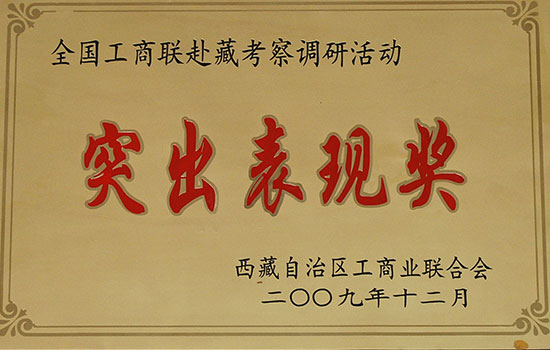 全国工商联赴藏考察调研活动 突出表现奖